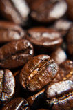 Brown coffee beans , close-up. Background, texture stock photography