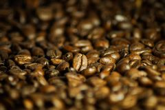 delicious coffee beans close up as a background royalty free stock photo