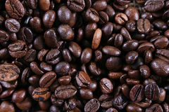 Brown coffee beans. Close-up of coffee beans for background and texture Stock Image