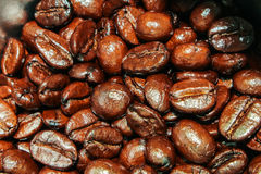 Brown coffee beans closeup vintage background texture Royalty Free Stock Photos
