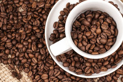Brown Coffee Beans in a cup. Roasted brown Coffee Beans in and around a cup Royalty Free Stock Photo