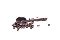 Brown coffee beans isolated Stock Image