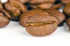 Brown Coffee Beans Lot Stock Images