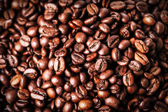 Brown coffee beans. Roasted coffee beans for background and text Royalty Free Stock Images