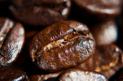 Brown coffee beans texture. Brown coffee beans,blur background Stock Images