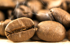 Brown coffee beans with white smoke vapour on yellow textured wo. Oden board background close up Royalty Free Stock Photos