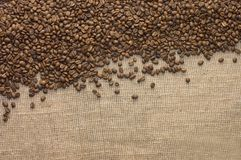 Brown coffee grains on a sacking Royalty Free Stock Photos