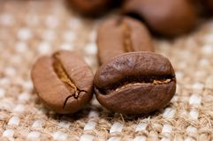 Brown coffee grains on a sacking Royalty Free Stock Image