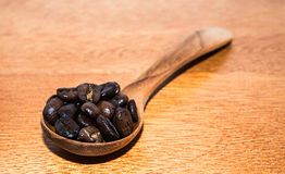 Brown Coffee In Spoons Royalty Free Stock Photography