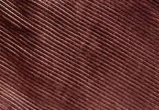 Brown color cloth texture with pattern Stock Photography
