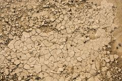 Brown color dry cracked muddy earth. As a background texture stock image