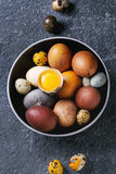 Brown colored easter eggs Royalty Free Stock Photo