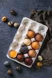 Brown colored easter eggs Stock Images