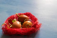 Easter eggs in red nest on blue background. Brown colored easter eggs in red nest on blue background royalty free stock photos