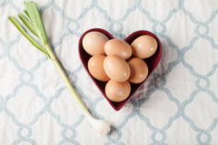 Brown Colored Eggs with green onion Stock Photos