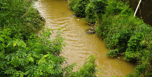 Brown coloured dirty river in Bogor indonesia Stock Image