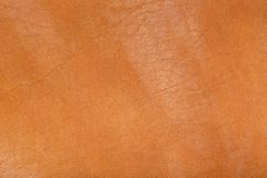 Brown coloured natural leather Royalty Free Stock Photography