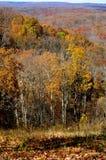 Brown County delstatspark Royaltyfria Foton