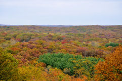 Brown County State Park Royalty Free Stock Photography
