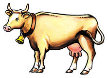 Brown cow Royalty Free Stock Photos