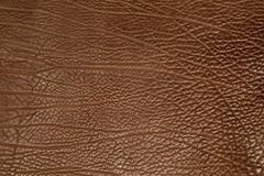 Brown cow structure leather Stock Photos