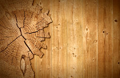 Brown cracked cross section of pine tree trunk Stock Images
