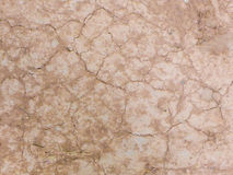 Brown cracked dry ground Royalty Free Stock Photography