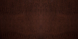 Brown crocodile leather background Royalty Free Stock Photos