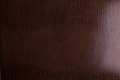 Brown crocodile leather background Royalty Free Stock Photo