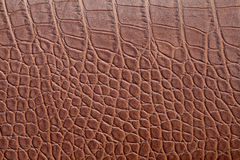 Brown crocodile skin Royalty Free Stock Photography