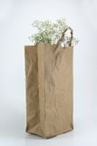 Brown Crumpled paper Bag Stock Image