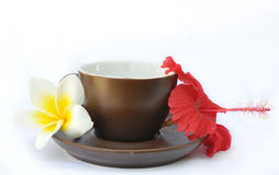 Brown cup and saucer with flowers frangipani and hibiscus Stock Images