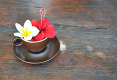 Brown cup and saucer with flowers frangipani and hibiscus Stock Image