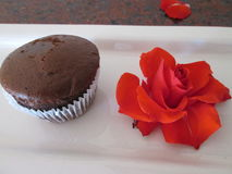 Brown Cupcake. A single undecorated brown cupcake Stock Photography