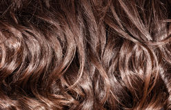 Brown curly hair background Royalty Free Stock Photo
