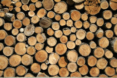 Brown cut wood Royalty Free Stock Images