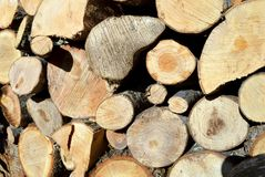 Brown cut wood for firewood. Stacked together Stock Photos