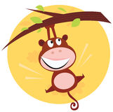 Brown cute monkey hanging from tree Royalty Free Stock Image