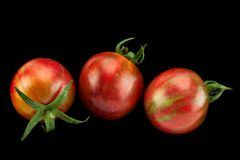 Brown czereśniowi pomidory na bielu Obraz Royalty Free