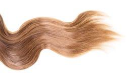 Brown, długi, falisty włosy na odosobnionym bielu, Zdjęcie Royalty Free