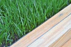 Brown de madeira com fundo da grama verde Orientação diagonal Fotografia de Stock