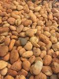 Brown de pedra Foto de Stock Royalty Free