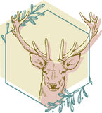 Brown deer on green hexagon surrounded. Olive branches Stock Image
