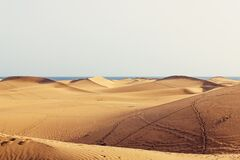 Brown Desert Royalty Free Stock Photos