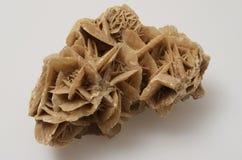 Brown desert rose stone. Macro of Brown desert rose stone on light background Stock Image