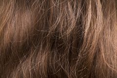 Brown hair texture closeup. royalty free stock photography