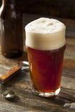 Brown di rinfresco Ale Beer immagine stock