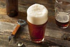 Brown di rinfresco Ale Beer fotografie stock libere da diritti