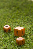 Brown dice on grass background. Royalty Free Stock Photos