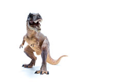 Brown Dinosaur Tyrannosaurus Rex front view - white background Stock Photography